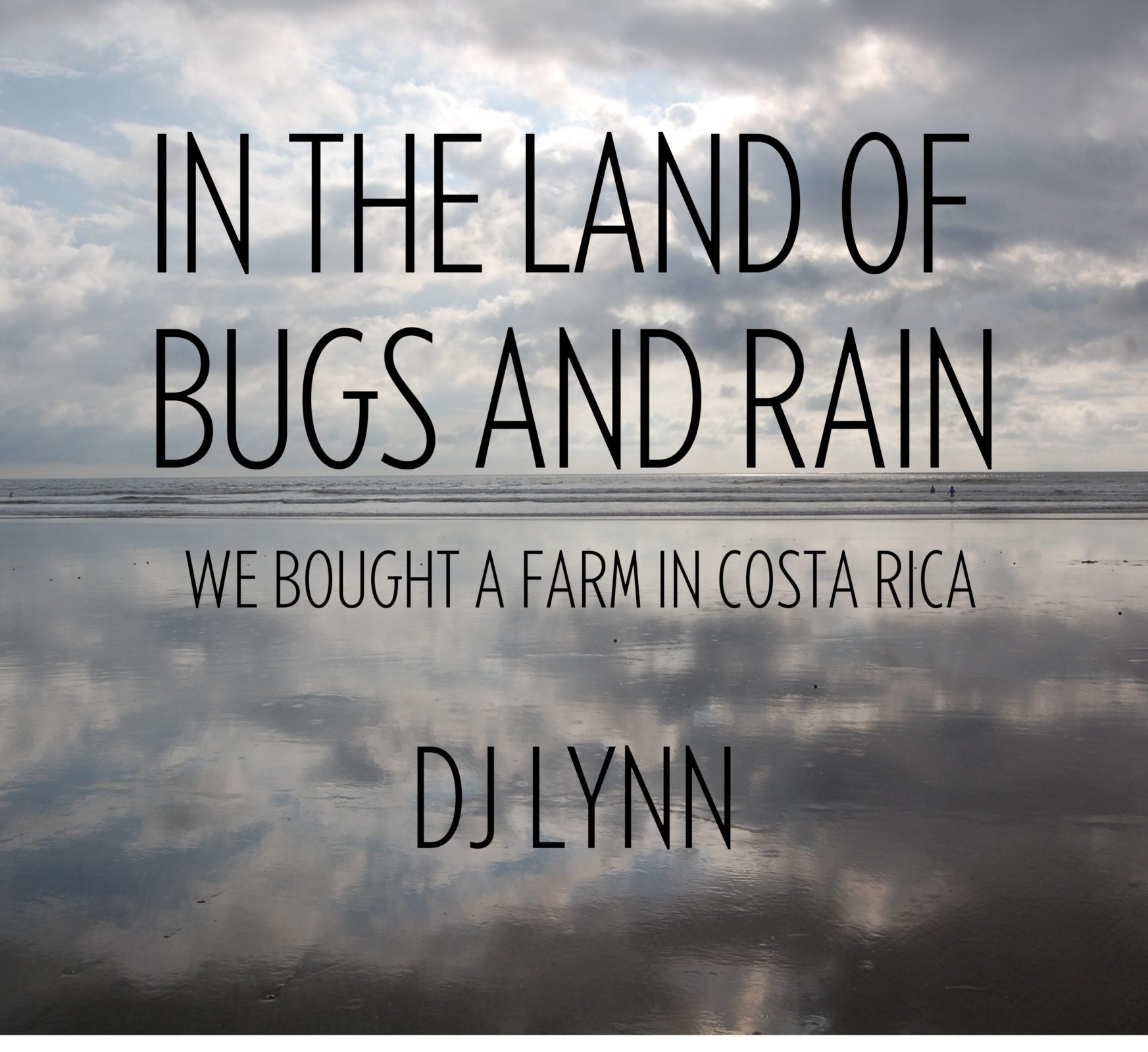 Debbi Lynn author, In The Land of Bugs and Rain